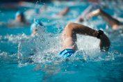 triathlon swimming
